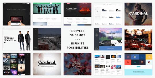 Cardinal – Wordpress Theme