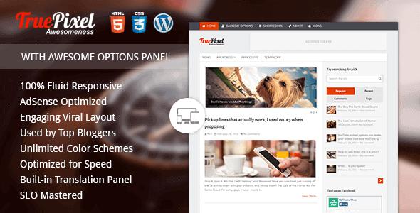 Truepixel – Responsive & Felixble Wordpress Blog Theme