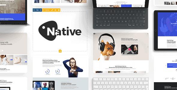 Native – Powerful Startup Development Tool
