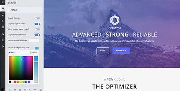 Optimizerpro Theme – Powerful Widget Management
