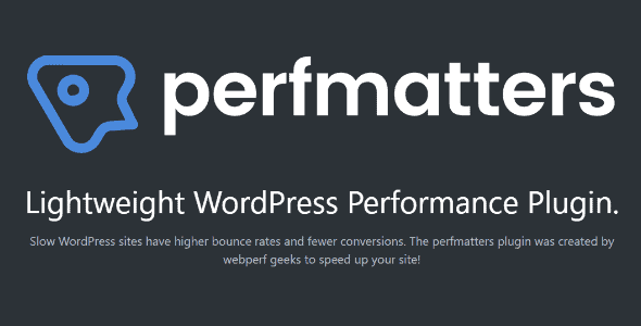Perfmatters – The #1 Web Performance Plugin For Wordpress