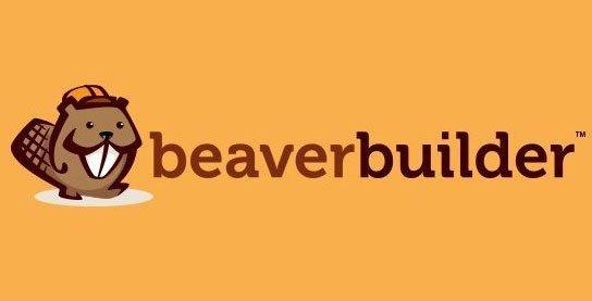 Beaver Themer – An Add-On For Beaver Builder