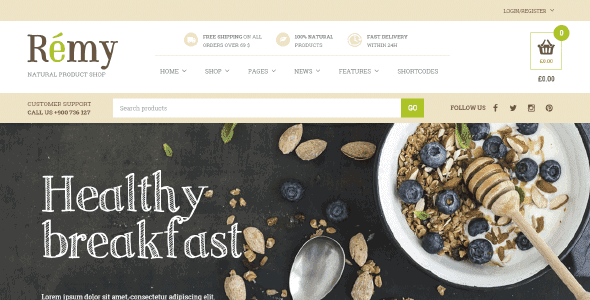 Yith Remy – A Simple And Tasty Food And Restaurant Wordpress Theme