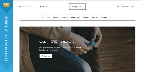 Storefront Galleria